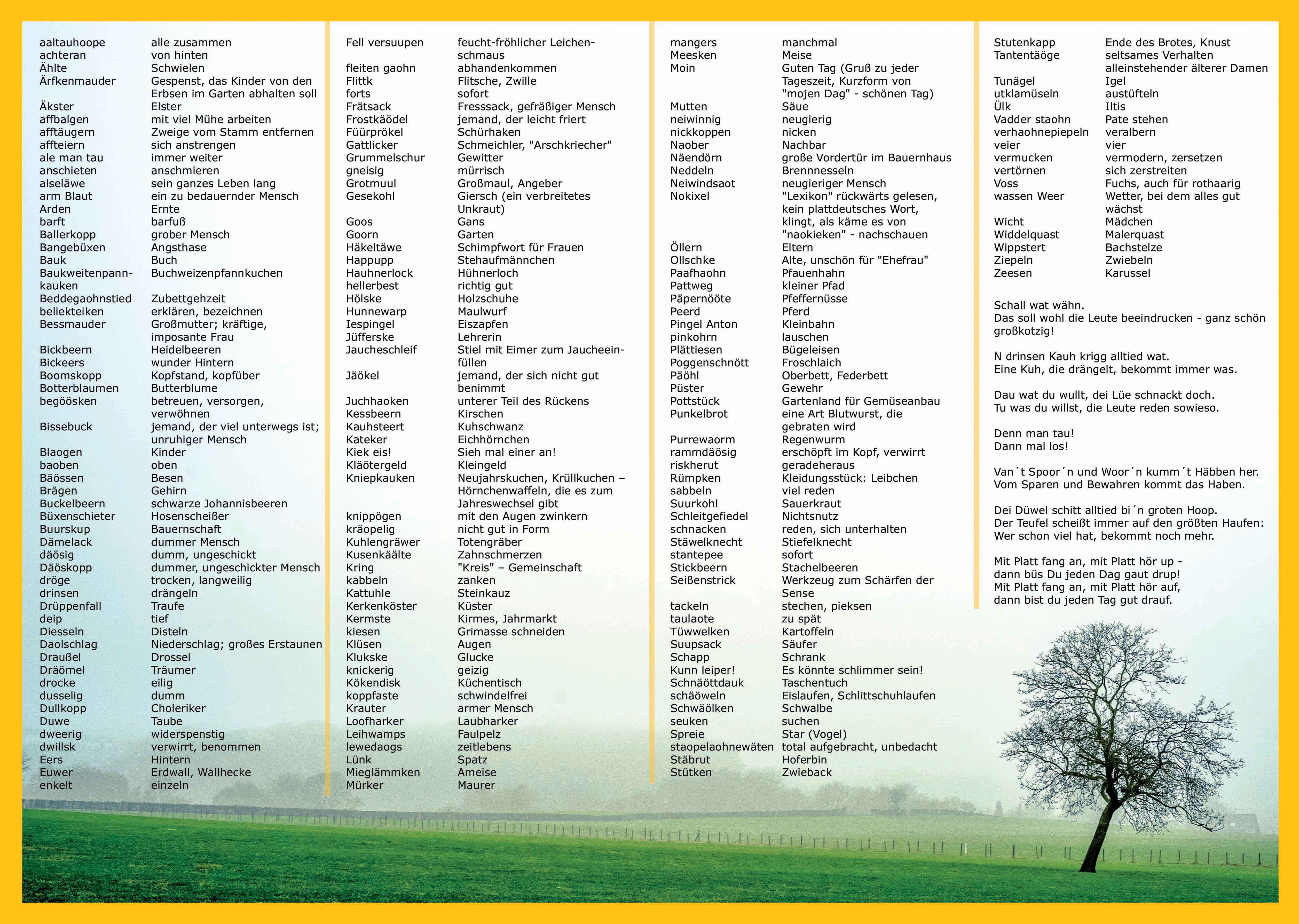Dit & Dat up Platt: 4er Set Tischsets, Platzsets - Plattdeutsche Begriffe mit Übersetzungen