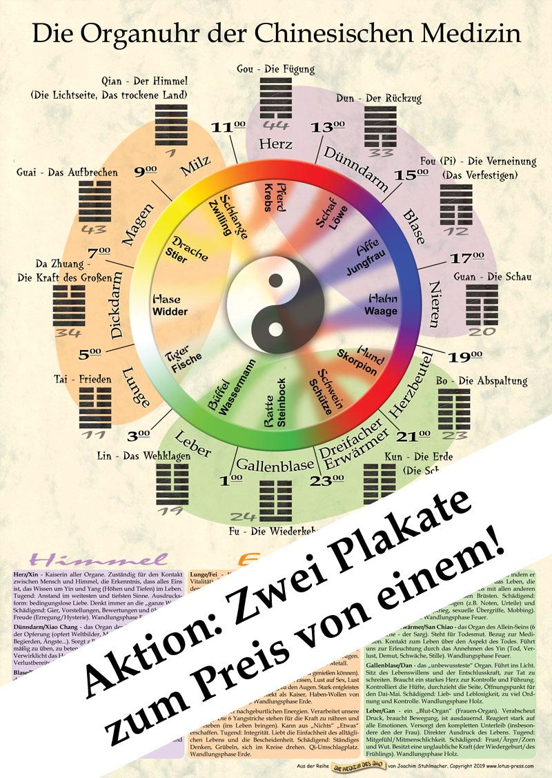 Die Organuhr der Chinesischen Medizin, Poster DIN A2